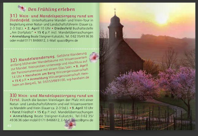 Veranstaltungskalender Mandelblüte Pfalz 2016